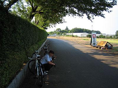 サイクリング中の牡丹園での休憩風景