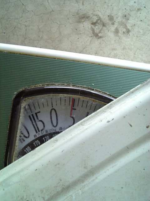 アドバンRG 14インチホイールの重量