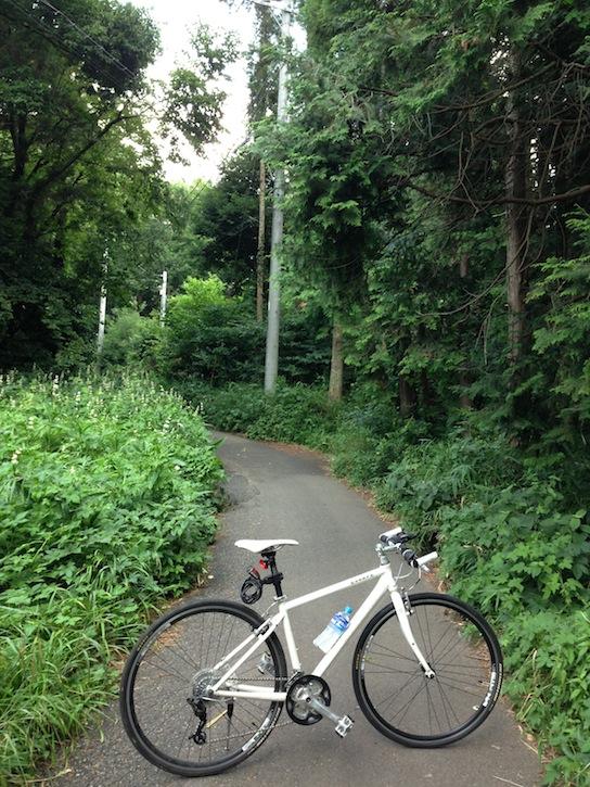 近所の林道とエスケープR3